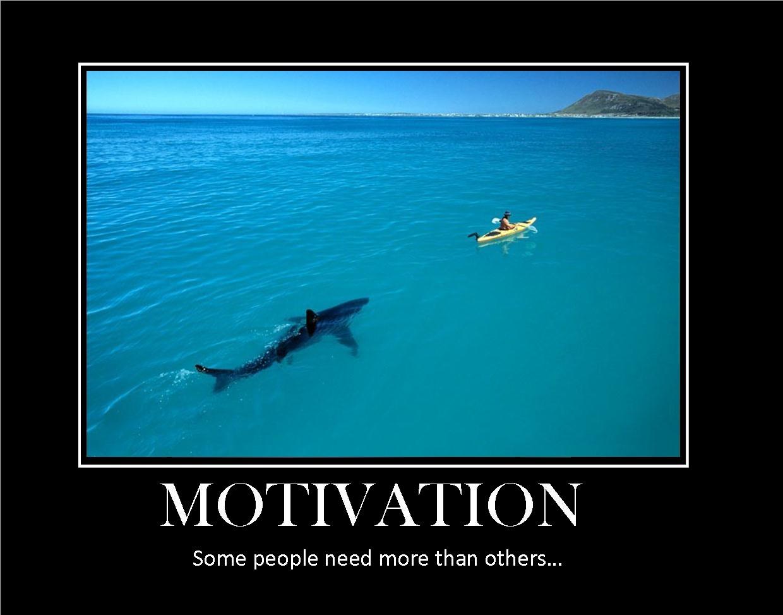 body_motivationshark
