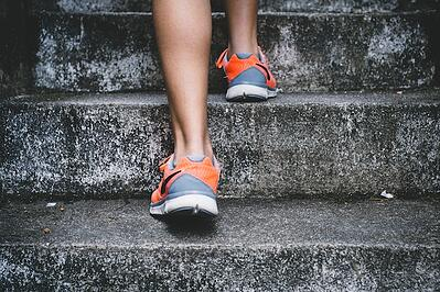 Body_Next_Steps