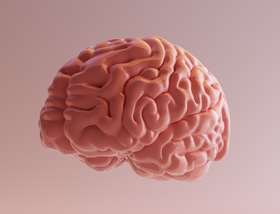 Brain Illustration- Edited