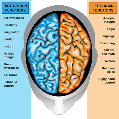 Left Brain RIght Brain Functions