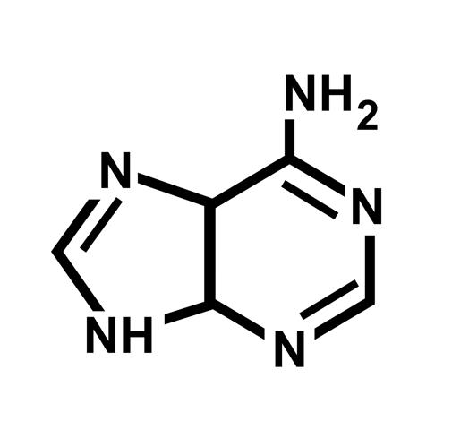 adenine-1769831_1920
