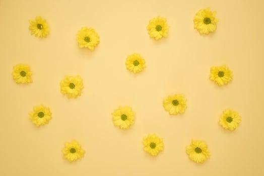 Understanding The Yellow Wallpaper: Summary and Analysis