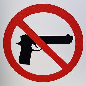 body-gun-control
