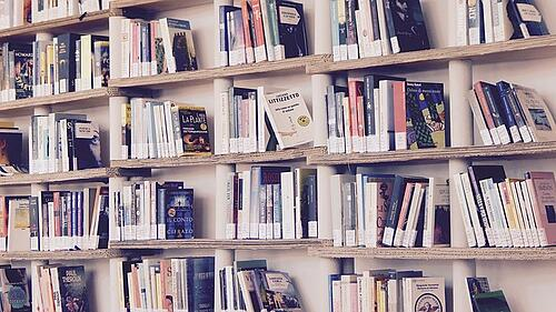 body-library-books-shelf