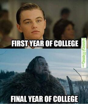 body-meme-aging-college-student-dicaprio