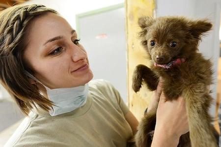 body-vet-with-puppy