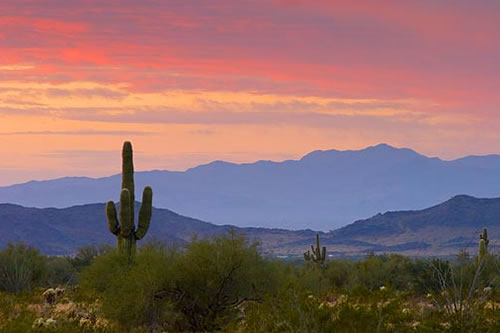 body_Arizona.jpg