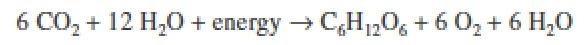 body_actscienctheonlyactualsciencemoleculeformula.jpg