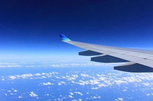 body_airplanewing.jpg