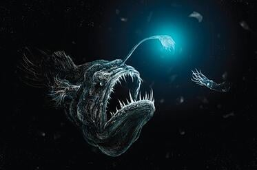 body_angler_fish