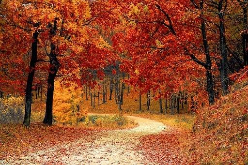 body_autumn-1