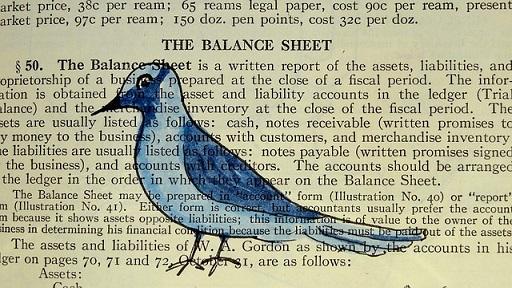 body_birdnotes.jpg