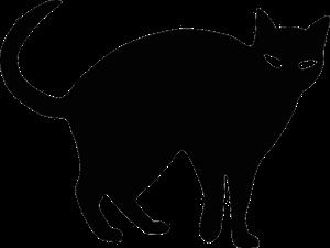 body_blackcat.png