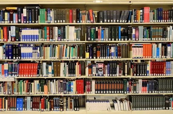body_bookshelves
