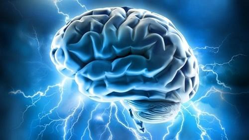 body_brain-1.jpg