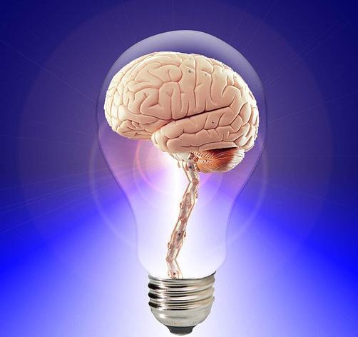 body_brain2.jpg