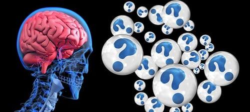 body_brain_questions