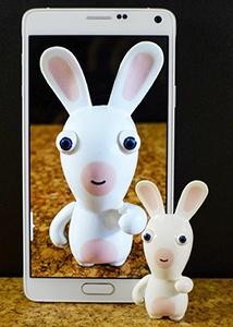 body_bunny.jpg