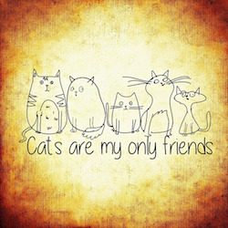 body_catsaremyonlyfriends.jpg