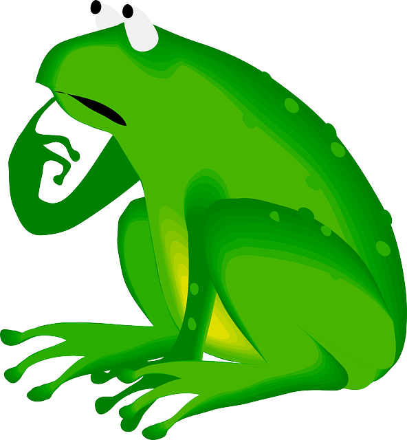 body_confused_frog.png
