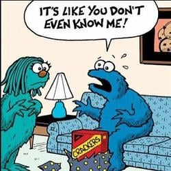 letter of recommendation body_cookiemonster