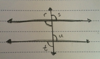 body_diagram_parallel.png