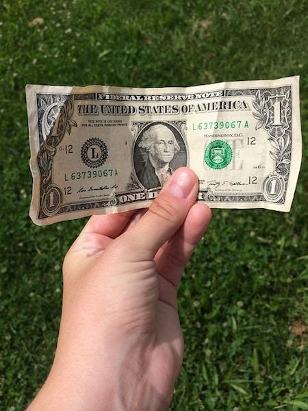 body_dollarbill.jpg