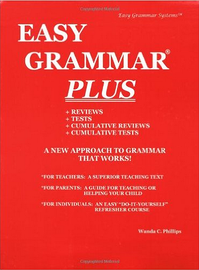the perfect english grammar workbook simple rules and quizzes to master todays english english edition