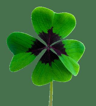 body_four_leaf_clover_lucky