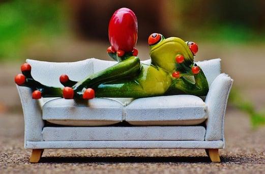 body_frog-2.jpg
