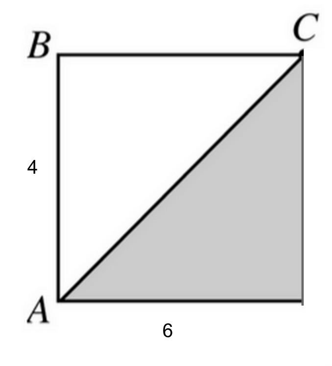 body_geometry_left_half.png