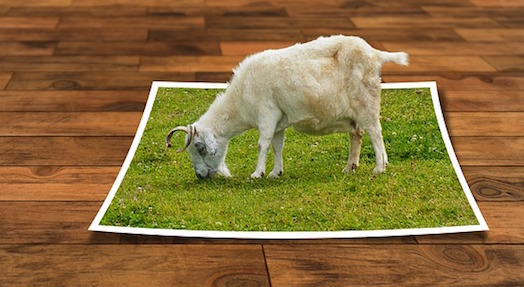 body_goat.jpg