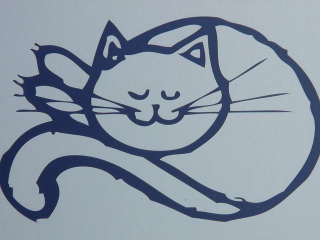 body_happy_cat
