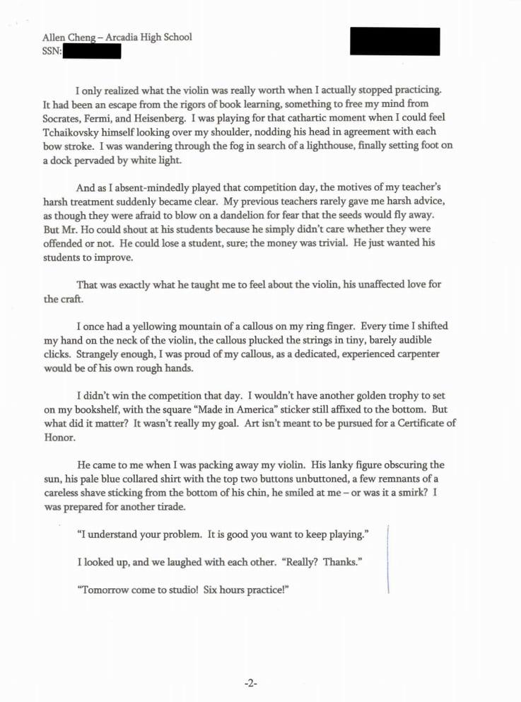 I need help with my high school essay digital agency business plan