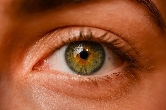 Of hazel meaning eyes the Hazel Eyes: