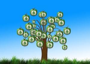 body_moneygrowsontrees.jpg