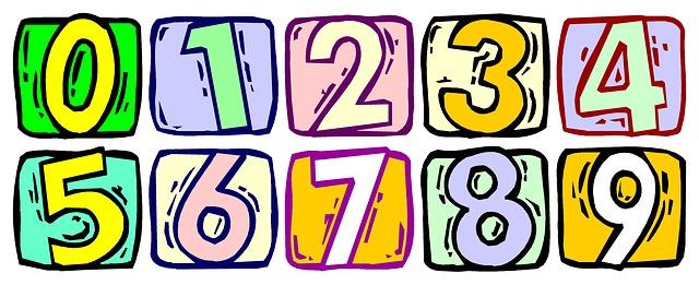 body_number.jpg