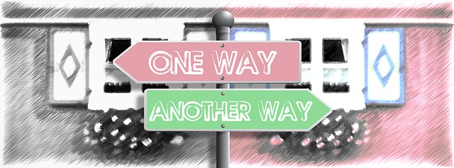 body_one_way_another_way_sign