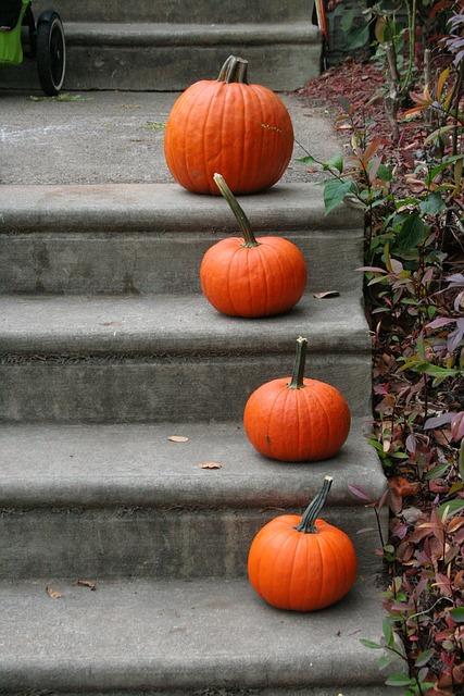 body_pumpkins_steps.jpg