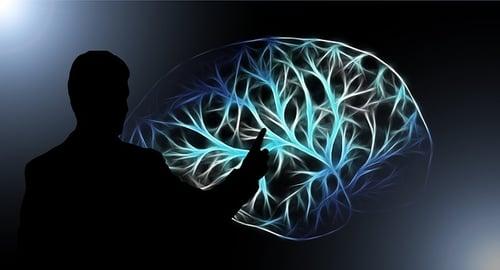 body_remember_brain