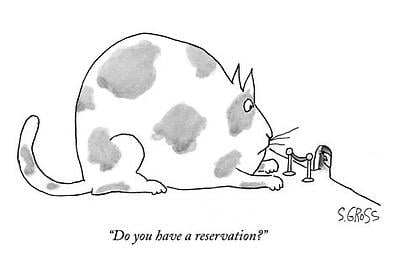 body_reservation