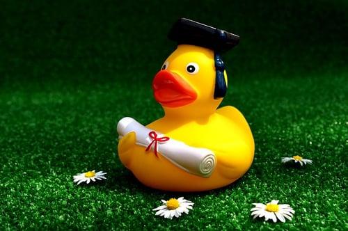 body_rubber_ducky_diploma