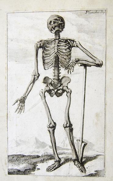body_skeletonstorytime