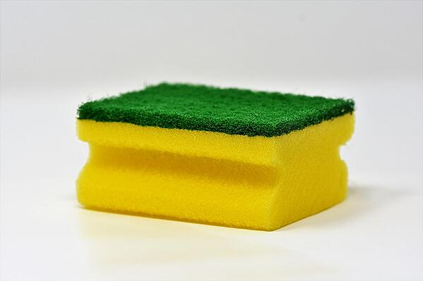 body_sponge