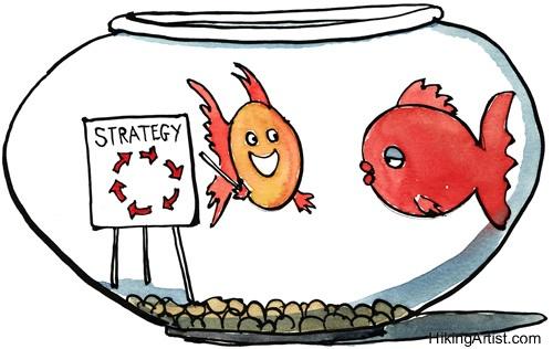 body_strategy-6