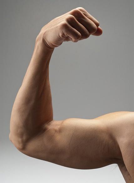 body_strongevidence-1.jpg