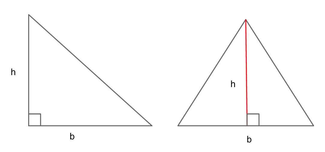 body_triangle_heights