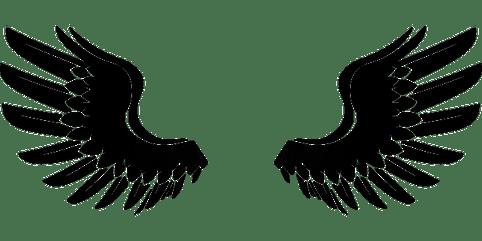 body_wings-cc0