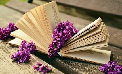 book-759873_640.jpg
