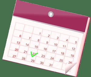 drive-calendar-test-date